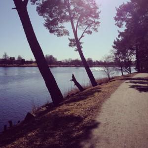 Sola i Karlstad ho skiner så grannt!